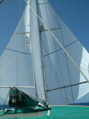 twin trade wind sails new 2009